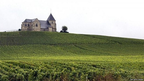 Champagne vineyards of France granted with World Heritage status by UNESCO