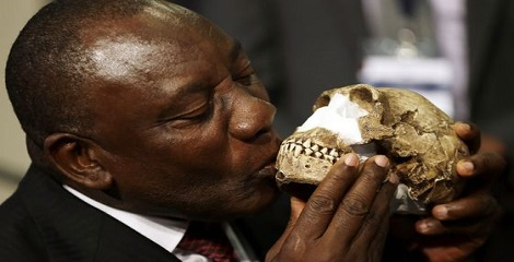 Homo naledi - New species of human ancestor discovered