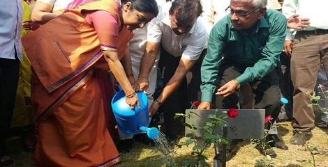 Sushma Swaraj inaugurates India-Africa Friendship Rose garden