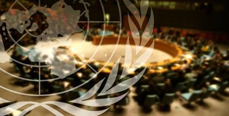 UNSC adopted French resolution to Prevent further IS attacks