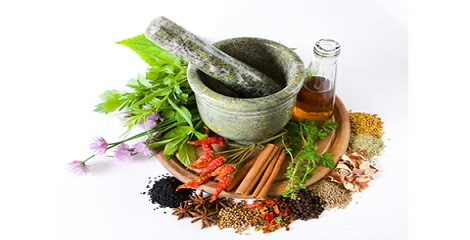 Cabinet approves to ink a consent in the area of Traditional Medicine AYUSH and WHO