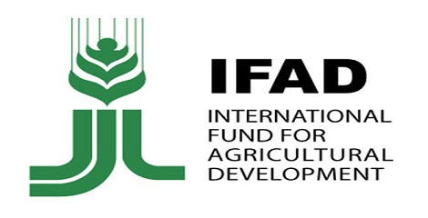 Dinesh Sharma designated as the Chairperson of Governing Council of IFAD, Rome