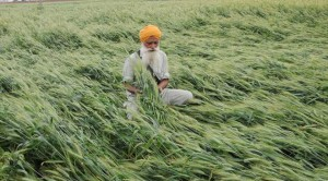 Punjab Assembly passes Agriculture Indebtedness bill