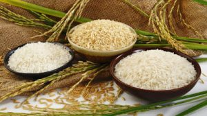 Gangavati to get Asia's first Rice Technology Park