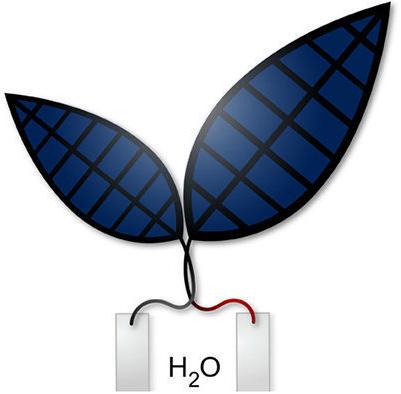 bionic-leaf