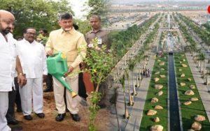 Andhra CM Mission Harita