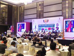 BRICS Wellness Workshop