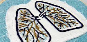 Mini 3D lungs