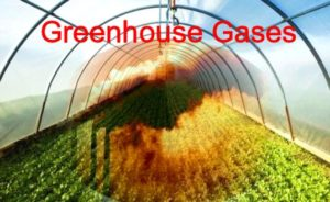 India to eliminate potent greenhouse gas HFC-23 by 2030