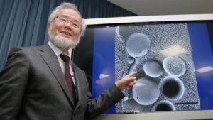 Noble Prize in Medicine