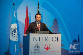 Meng Hongwei elected the President of the International Criminal Police Organization (Interpol)