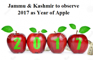 Jammu & Kashmir to observe 2017 as Year of Apple