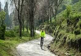 First Hill Station Bicycle Path