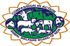 Environment Ministry official to chair animal welfare board