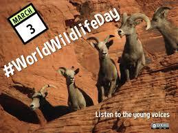 World wildlife day - March 3, 2017