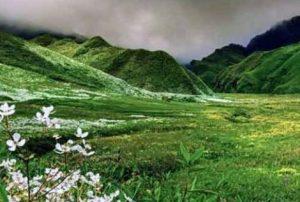 Dailong village in Manipur declared Biodiversity Heritage Site