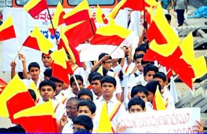 Karnataka appoints panel to design 'state flag', look into legal sanctity