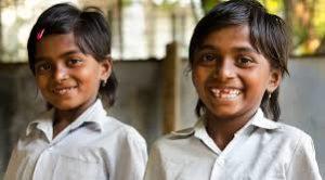 Goa ranks top, Bihar at bottom of Gender Vulnerability Index