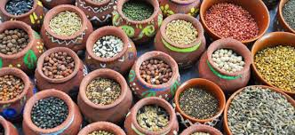 India asks UN to declare 2018 as International Year of Millets