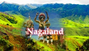 Nagaland becomes first North East state to launch PoS for electricity bill payments