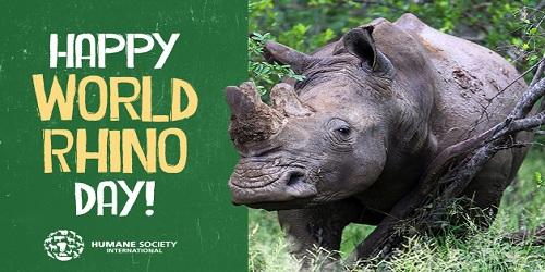 Assam to observe 'Rhino Day' onSeptember 22