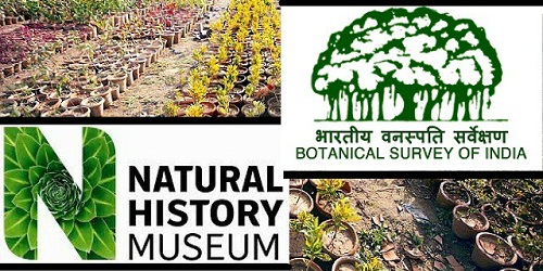Botanical Survey of India Signs MoU with Natural History Museum, UK