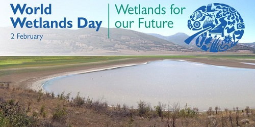 World Wetlands Day - February 2