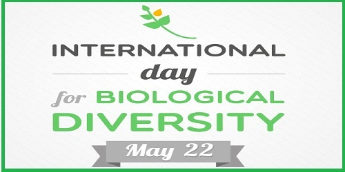 International Bio-diversity Day