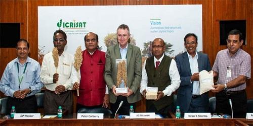 India gets its first biofortified sorghum (jowar) - Parbhani Shakti