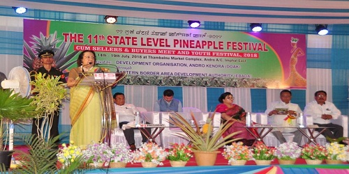 Manipur hosts 11th state-level pineapple festival cum Sellers & Buyers Meet and Youth Festival, 2018
