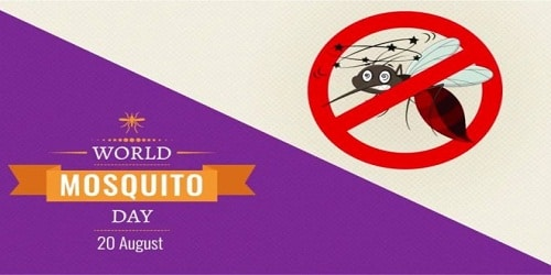 World Mosquito Day – August 20