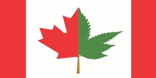 Canada Becomes 2nd Country To Legalize Recreational Cannabis