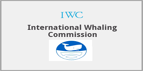 Japan announces International Whaling Commission (IWC) withdrawal