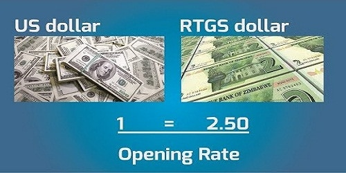 Zimbabwe Starts Trading New Currency RTGS dollar