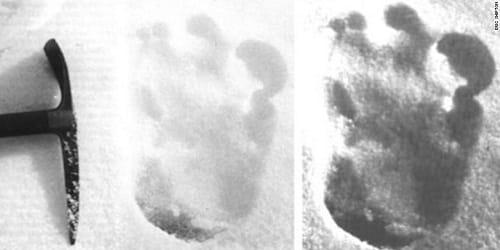 'Yeti' footprints