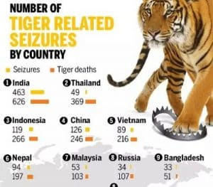 """2019 report by """"TRAFFIC"""" reveals 2000 tigers poached"""