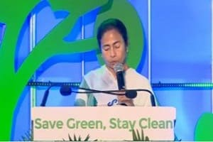 Save Green, Stay Clean