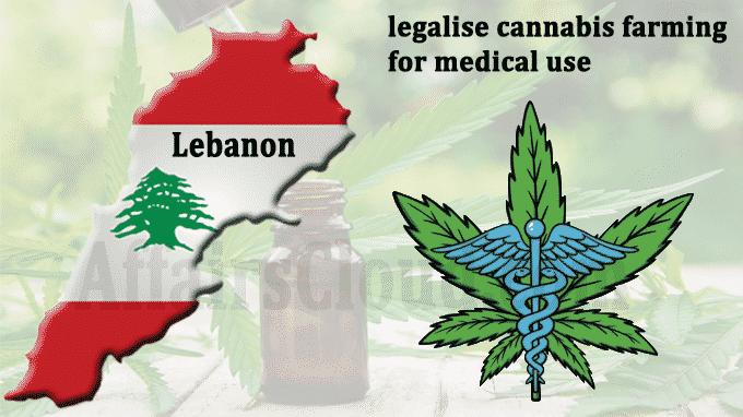 Lebonon legalise cannabis farming for medical use