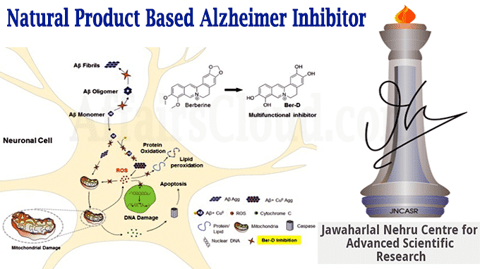 Natural product based Alzheimer inhibitor