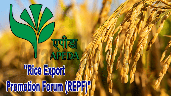 Centre sets up new body Rice Export Promotion Forum to promote rice exports