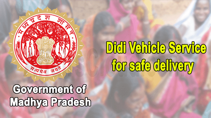 Didi Vehicle Service for safe delivery