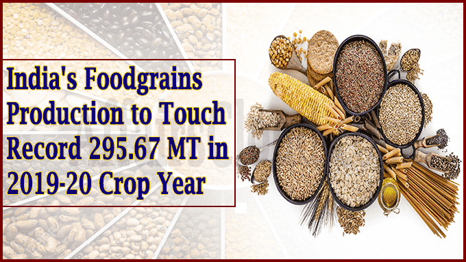 India's foodgrains production to touch record 295Indias foodgrains
