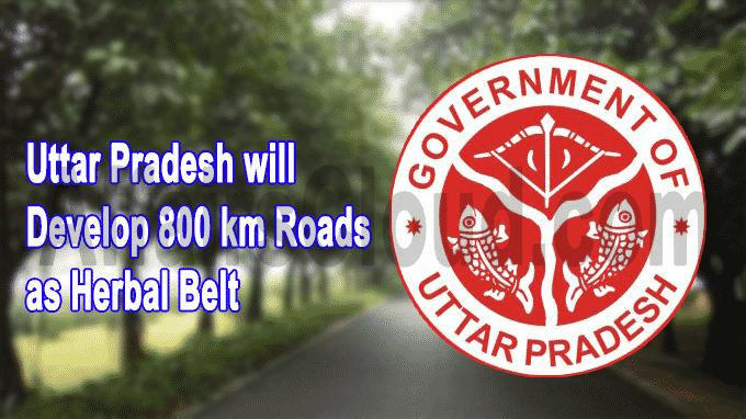 Uttar Pradesh will develop 800 km roads as Herbal belt