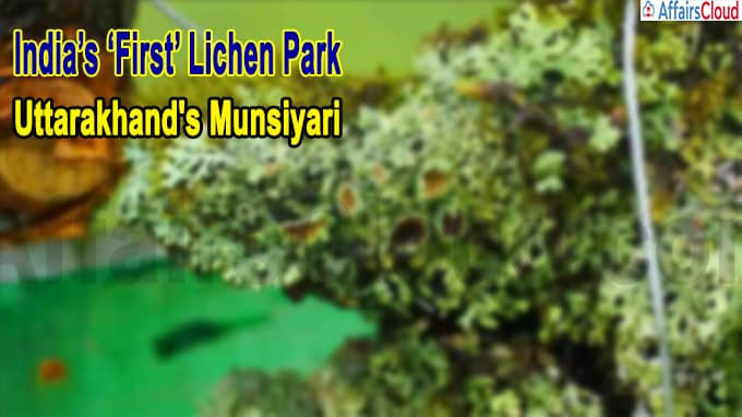 India's 'first' lichen park in Uttarakhand's Munsiyari
