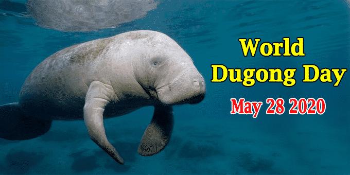 World Dugong Day 2020