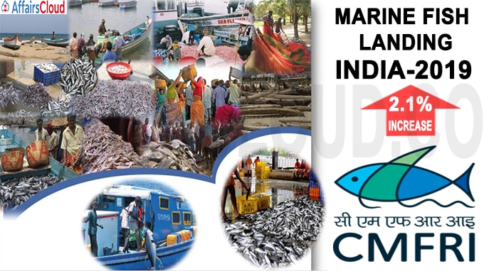 Indian marine fish landings rise marginally in 2019 new