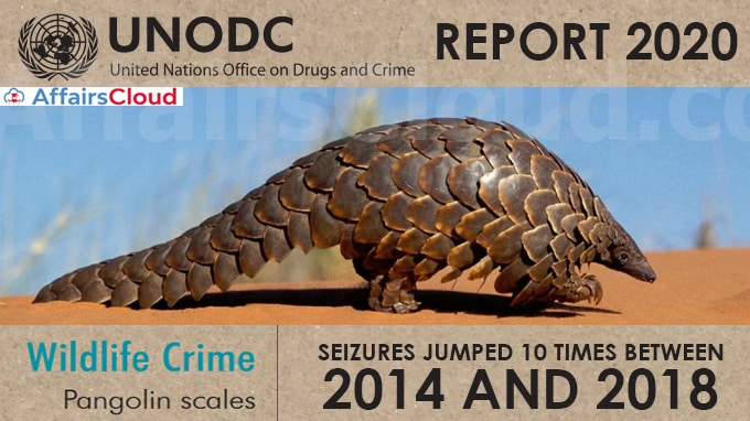 Pangolin-scale-seizures-jumped-10-times-between-2014-and-2018-UN's-World-Wildlife-Crime-Report-2020
