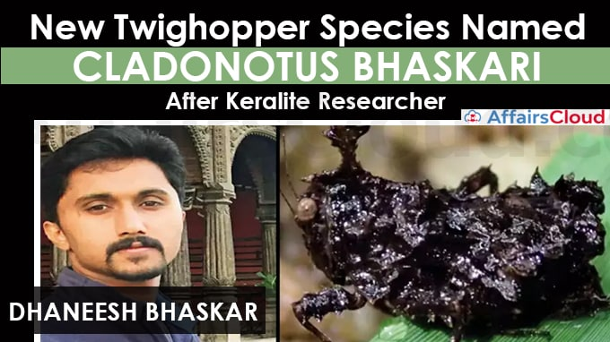 New-twighopper-species-named-Cladonotus-bhaskari-after-Keralite-researcher-Dhaneesh-Bhaskar