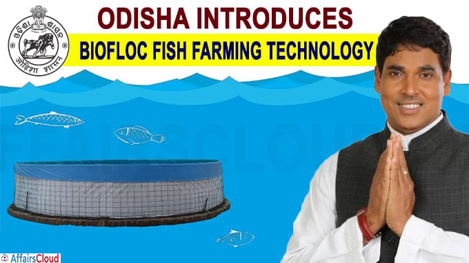 Odisha introduces scheme to promote bio-floc fish farming technology