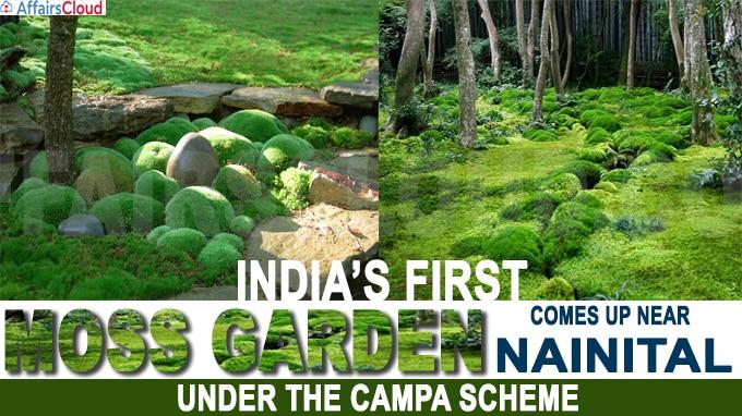 India's first moss garden